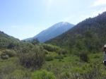 Mt Sopris from Perham Creek trail