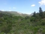 South Thompson Creek