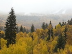 snowmass ski area from road