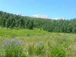 Mt Sopris on Thomas Lakes trail