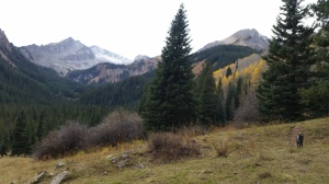 Mt Daly from west snowmass creek trail